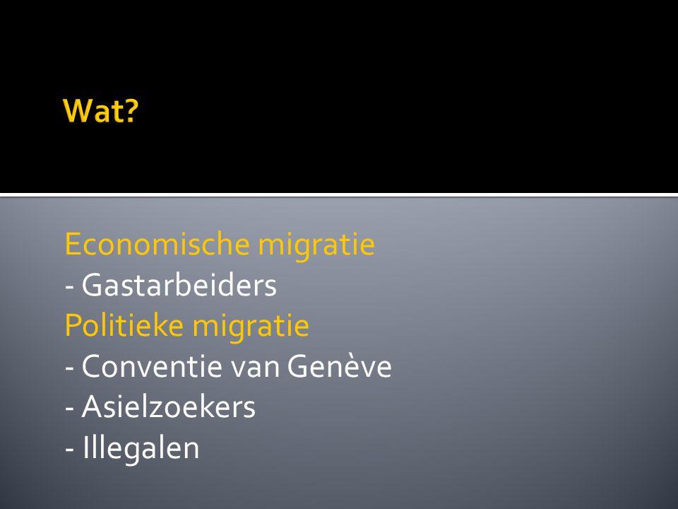 Economische migratie - Gastarbeiders Politieke migratie - Conventie van Genève - Asielzoekers - Illegalen