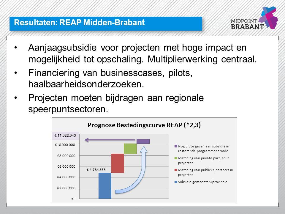 Resultaten: REAP Midden-Brabant •Aanjaagsubsidie voor projecten met hoge impact en mogelijkheid tot opschaling. Multiplierwerking centraal. •Financier