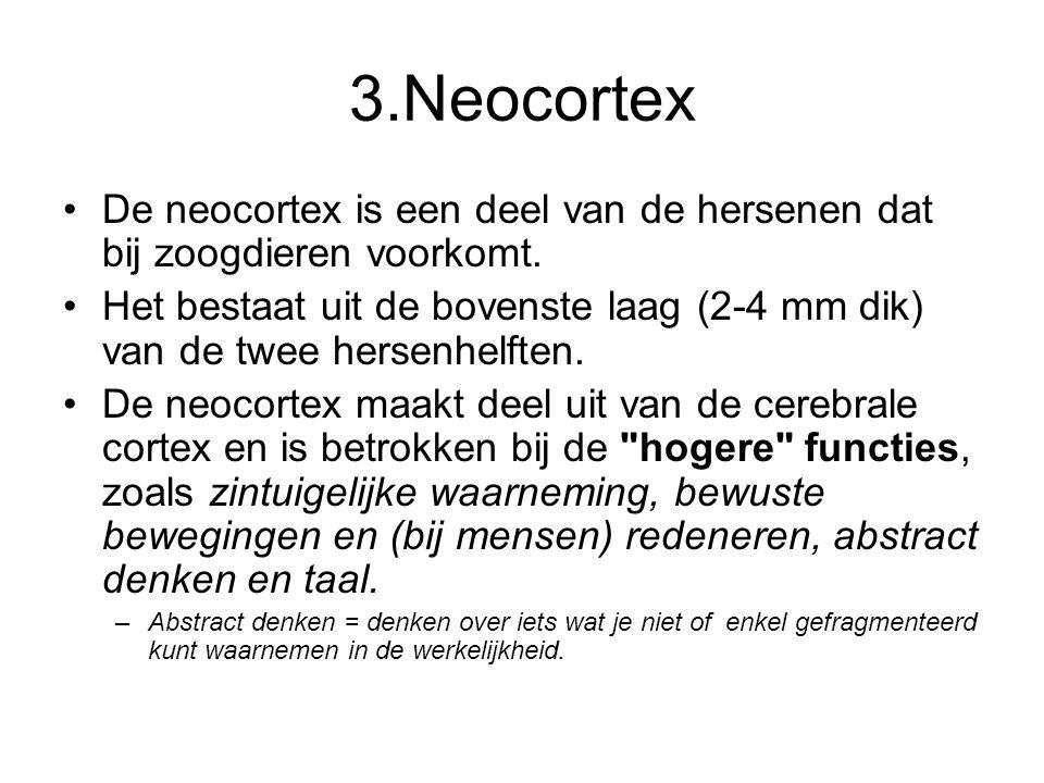 3.Neocortex •De neocortex is een deel van de hersenen dat bij zoogdieren voorkomt. •Het bestaat uit de bovenste laag (2-4 mm dik) van de twee hersenhe