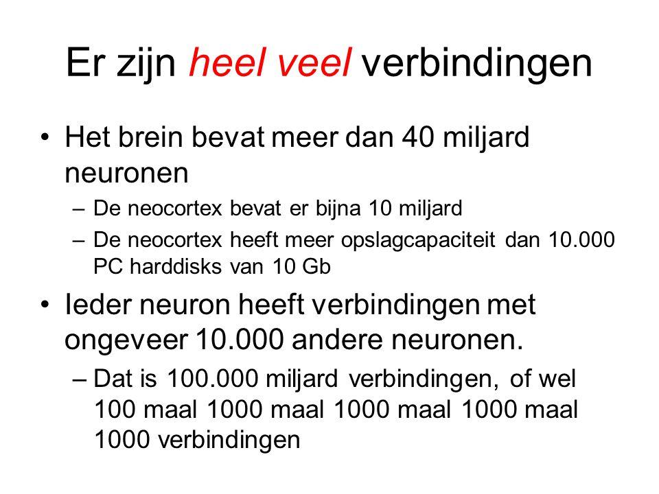 Er zijn heel veel verbindingen •Het brein bevat meer dan 40 miljard neuronen –De neocortex bevat er bijna 10 miljard –De neocortex heeft meer opslagca
