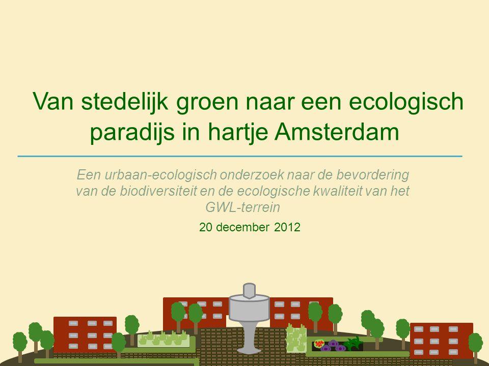 Van stedelijk groen naar een ecologisch paradijs in hartje Amsterdam Een urbaan-ecologisch onderzoek naar de bevordering van de biodiversiteit en de e