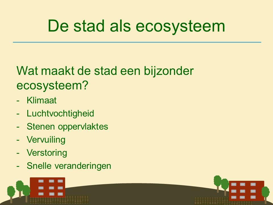 De stad als ecosysteem Wat maakt de stad een bijzonder ecosysteem? -Klimaat -Luchtvochtigheid -Stenen oppervlaktes -Vervuiling -Verstoring -Snelle ver