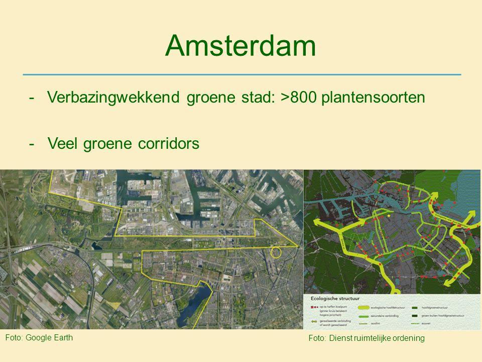 Amsterdam -Verbazingwekkend groene stad: >800 plantensoorten - Veel groene corridors Foto: Google Earth Foto: Dienst ruimtelijke ordening