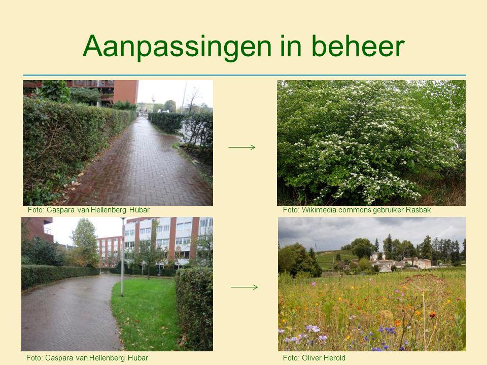 Aanpassingen in beheer Foto: Caspara van Hellenberg Hubar Foto: Wikimedia commons gebruiker Rasbak Foto: Oliver Herold Foto: Caspara van Hellenberg Hu