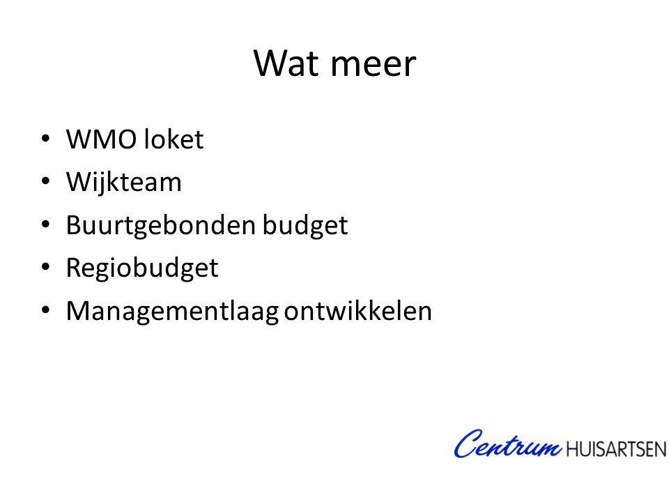 Wat meer • WMO loket • Wijkteam • Buurtgebonden budget • Regiobudget • Managementlaag ontwikkelen