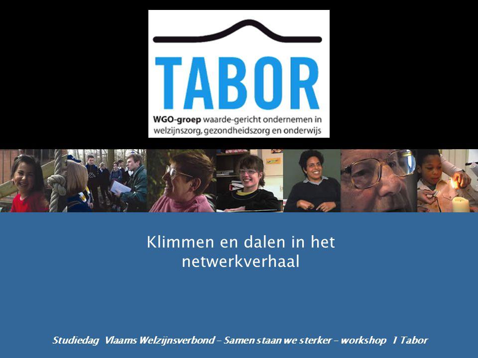 Studiedag Vlaams Welzijnsverbond – Samen staan we sterker – workshop 1 Tabor Klimmen en dalen in het netwerkverhaal