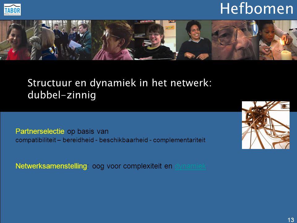 Hefbomen 13 Structuur en dynamiek in het netwerk: dubbel-zinnig Partnerselectie op basis van compatibiliteit – bereidheid - beschikbaarheid - compleme