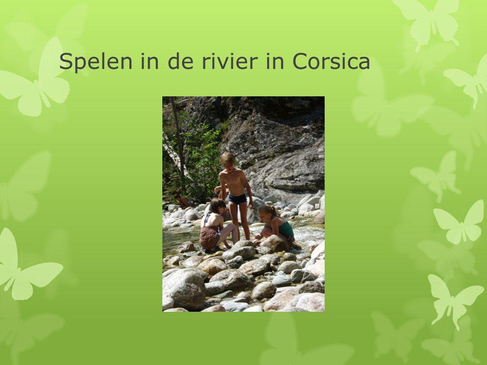 Spelen in de rivier in Corsica