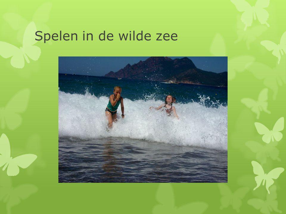 Spelen in de wilde zee