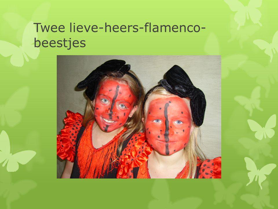 Twee lieve-heers-flamenco- beestjes
