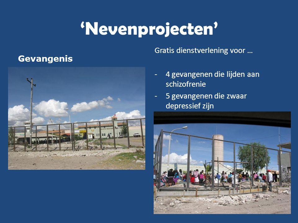 'Nevenprojecten' Gevangenis Gratis dienstverlening voor … -4 gevangenen die lijden aan schizofrenie -5 gevangenen die zwaar depressief zijn