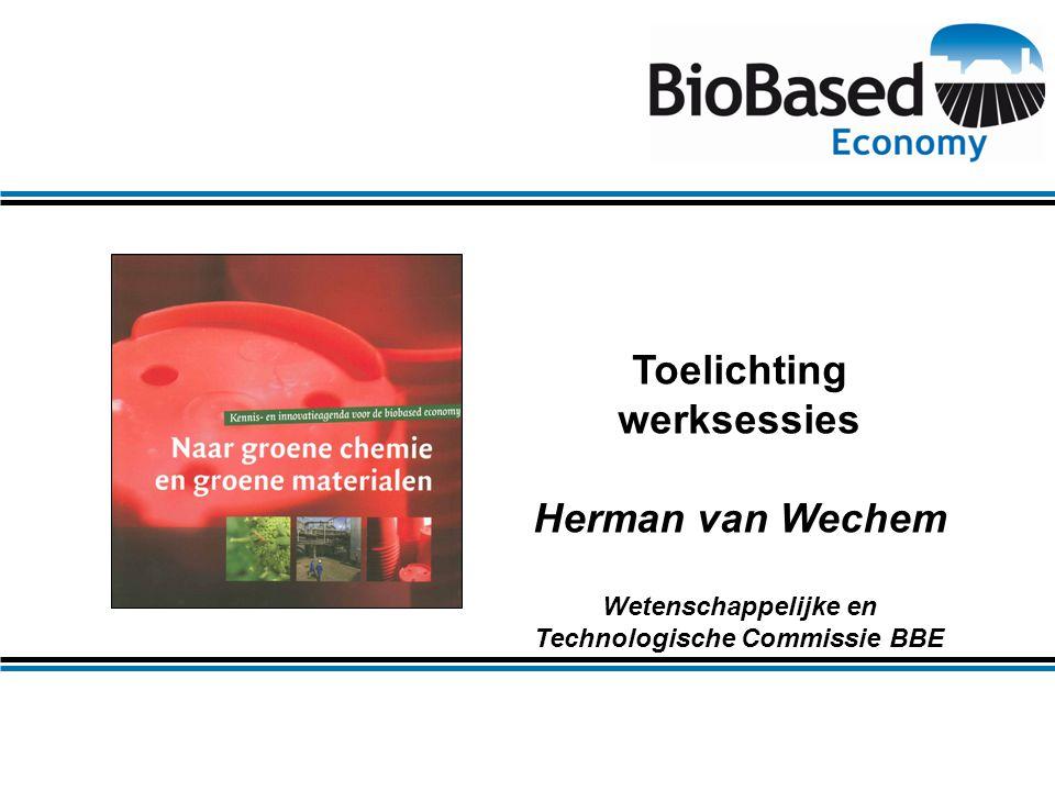 Toelichting werksessies Herman van Wechem Wetenschappelijke en Technologische Commissie BBE