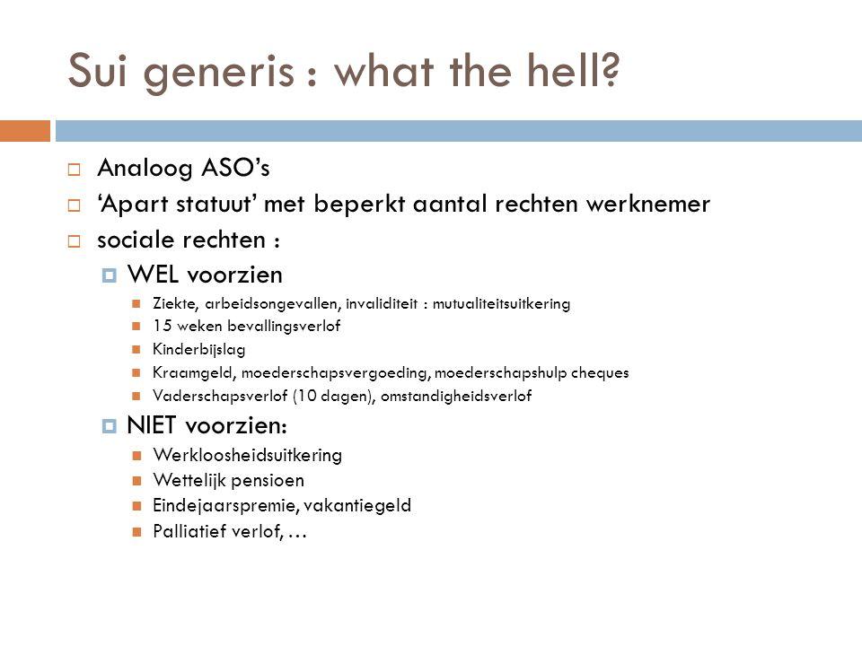 Sui generis : what the hell?  Analoog ASO's  'Apart statuut' met beperkt aantal rechten werknemer  sociale rechten :  WEL voorzien  Ziekte, arbei