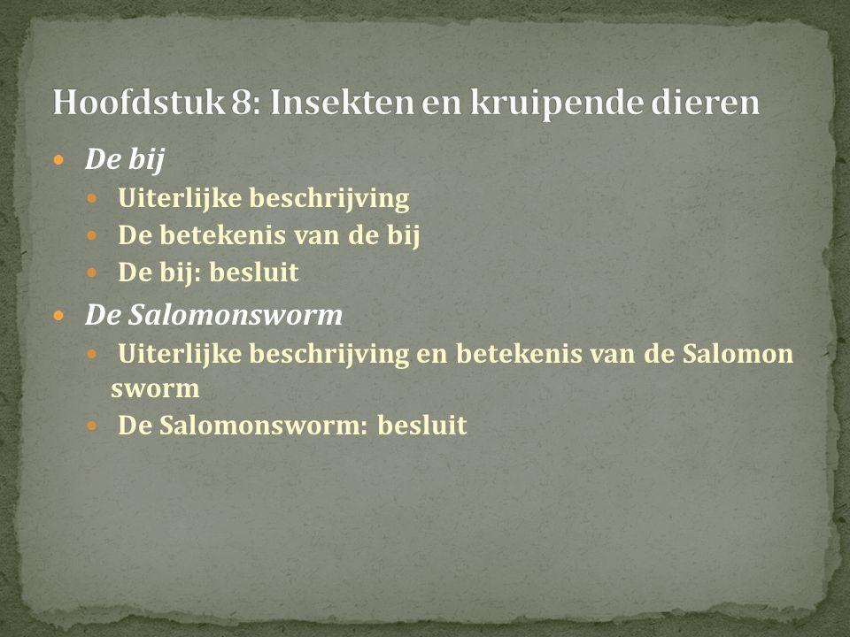  De bij  Uiterlijke beschrijving  De betekenis van de bij  De bij: besluit  De Salomonsworm  Uiterlijke beschrijving en betekenis van de Salomon sworm  De Salomonsworm: besluit