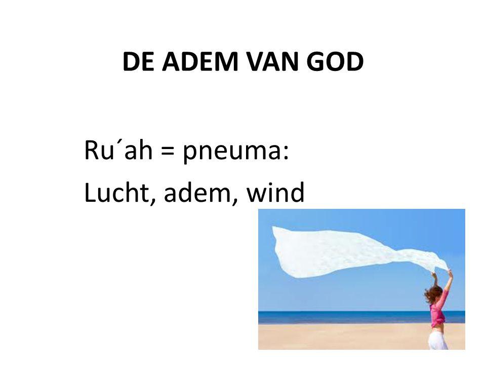 DE ADEM VAN GOD Ru´ah = pneuma: Lucht, adem, wind