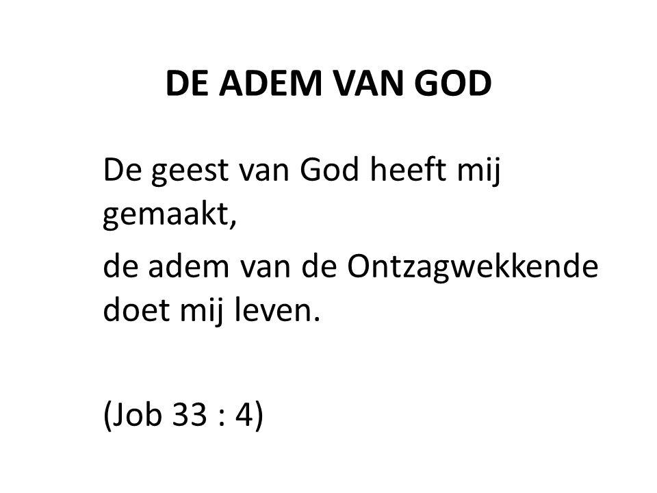 DE ADEM VAN GOD De geest van God heeft mij gemaakt, de adem van de Ontzagwekkende doet mij leven. (Job 33 : 4)