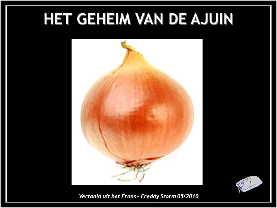 HET GEHEIM VAN DE AJUIN Vertaald uit het Frans – Freddy Storm 05/2010