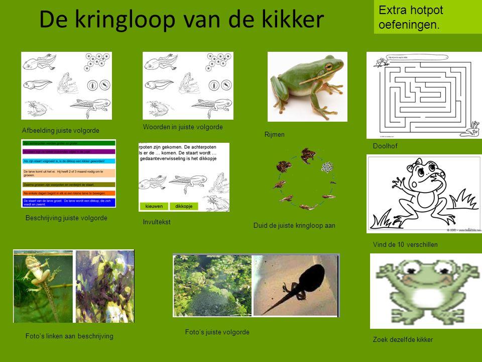 http://www.schooltv.nl/beeldbank/clip/20030611_groenekikker03 Klik op onderstaande link om de video te bekijken: Klik hier om de invultekst in te vullen.