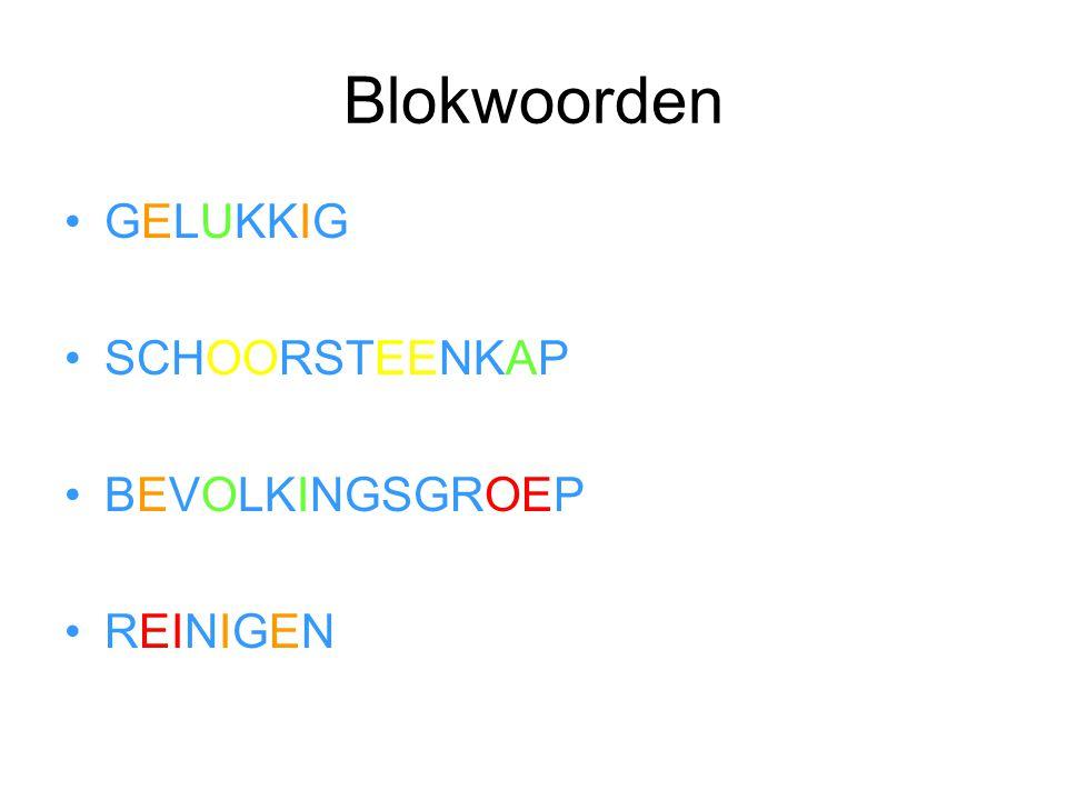 Blokwoorden •GELUKKIG •SCHOORSTEENKAP •BEVOLKINGSGROEP •REINIGEN