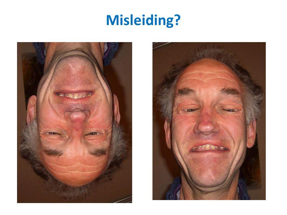 Wat zie je als je deze foto rechtopzet (180 o draait)? Welke emoties meen je te zien bij deze persoon? Misleiding?