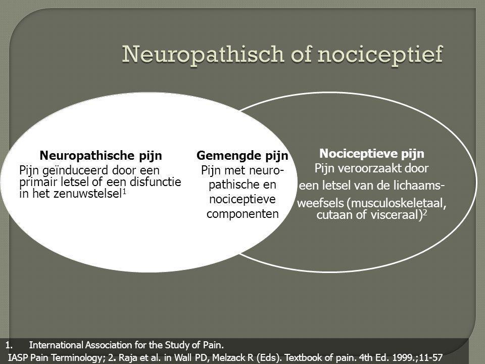  Neuropathische pijn • Veroorzaakt door een letsel of disfunctie van het centraal of perifeer zenuwstelsel of beide • Heeft geen enkel nuttig doel • Is meestal continu en chronisch Pasero C et al.