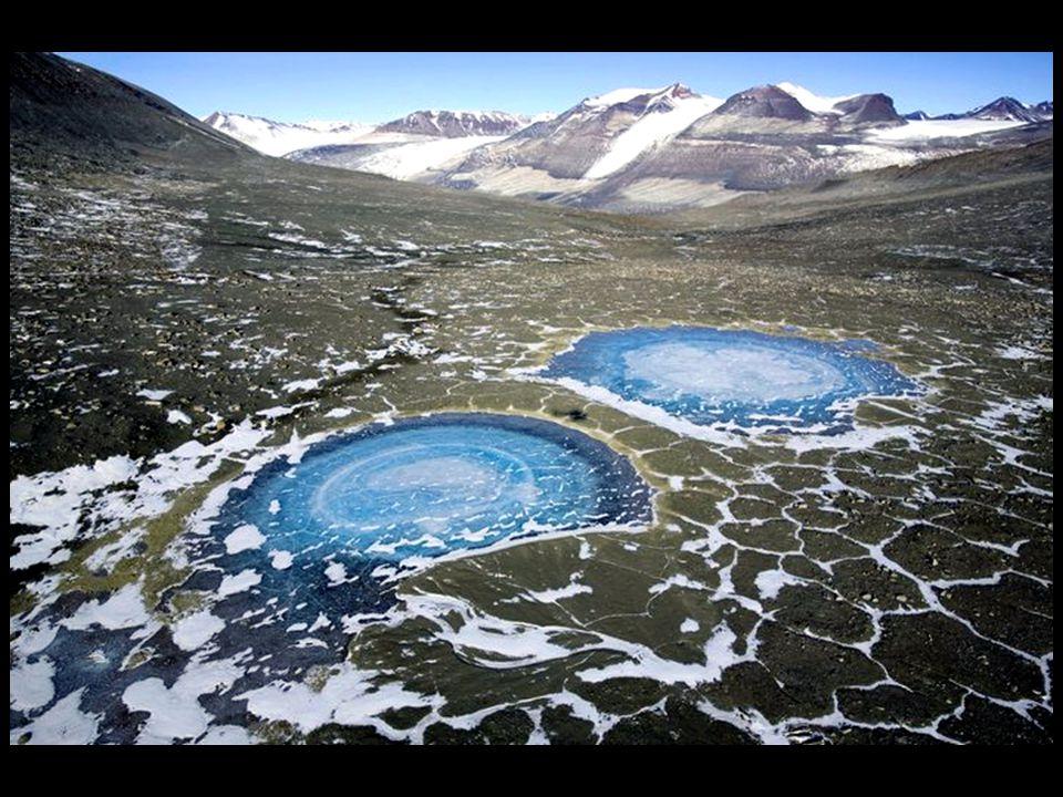 De droge valleien van de Zuidpool met hun steriele grindbodems zijn op Aarde de plek die het meest lijkt op de zeebodem. Dieren en planten worden perf