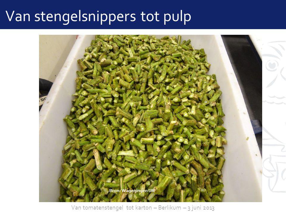 sheet 10 Van stengelsnippers tot pulp Bron: Wageningen UR Van tomatenstengel tot karton – Berlikum – 3 juni 2013
