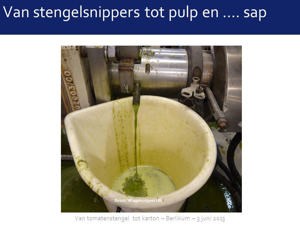 sheet 11 Bron: Wageningen UR Van stengelsnippers tot pulpVan stengelsnippers tot pulp en …. sap Van tomatenstengel tot karton – Berlikum – 3 juni 2013