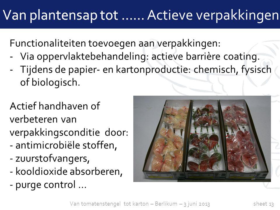 sheet 13 Van plantensap tot …… Actieve verpakkingen Functionaliteiten toevoegen aan verpakkingen: -Via oppervlaktebehandeling: actieve barrière coatin