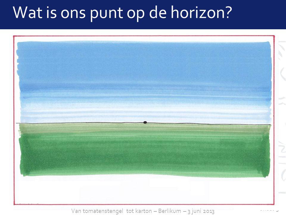 sheet 5 Wat is ons punt op de horizon? Van tomatenstengel tot karton – Berlikum – 3 juni 2013
