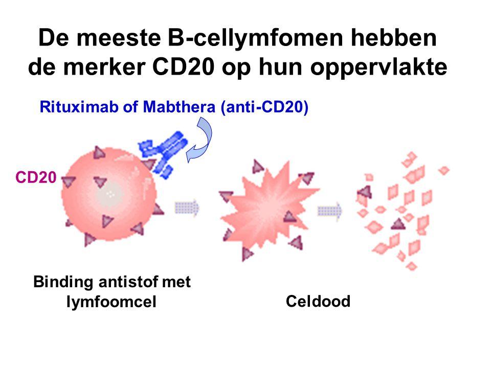 De meeste B-cellymfomen hebben de merker CD20 op hun oppervlakte CD20 Rituximab of Mabthera (anti-CD20) Binding antistof met lymfoomcel Celdood