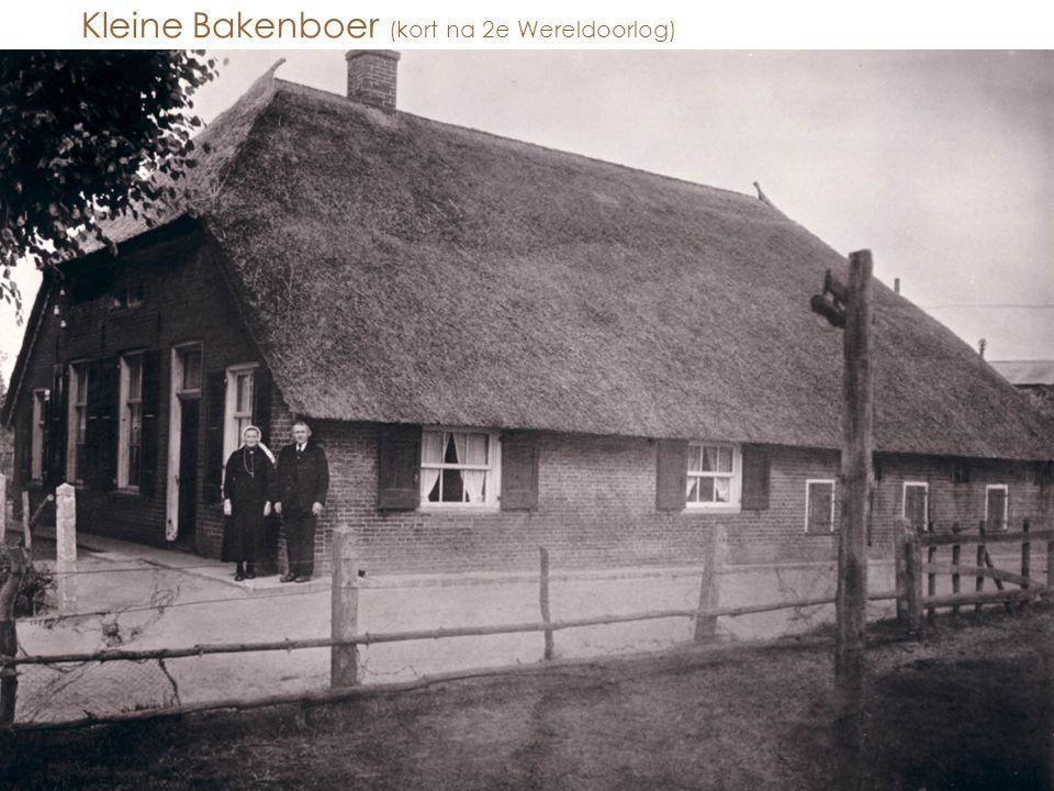 Kleine Bakenboer (kort na 2e Wereldoorlog)