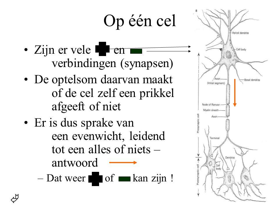 Op één cel •Zijn er vele en verbindingen (synapsen) •De optelsom daarvan maakt of de cel zelf een prikkel afgeeft of niet •Er is dus sprake van een ev