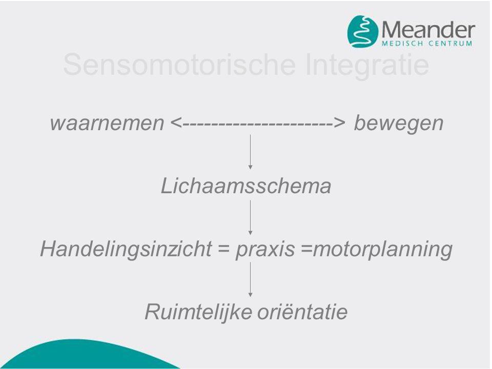 Sensomotorische Integratie waarnemen bewegen Lichaamsschema Handelingsinzicht = praxis =motorplanning Ruimtelijke oriëntatie