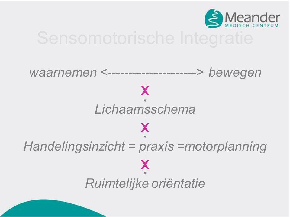 Sensomotorische Integratie waarnemen bewegen X Lichaamsschema X Handelingsinzicht = praxis =motorplanning X Ruimtelijke oriëntatie