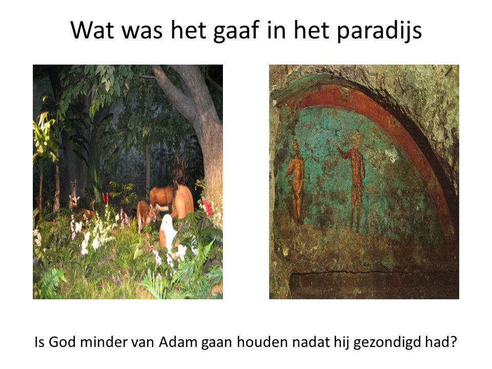 Wat was het gaaf in het paradijs Is God minder van Adam gaan houden nadat hij gezondigd had?