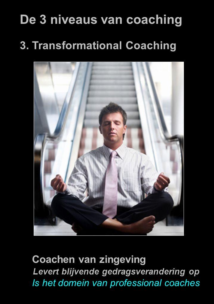 De 3 niveaus van coaching 3.