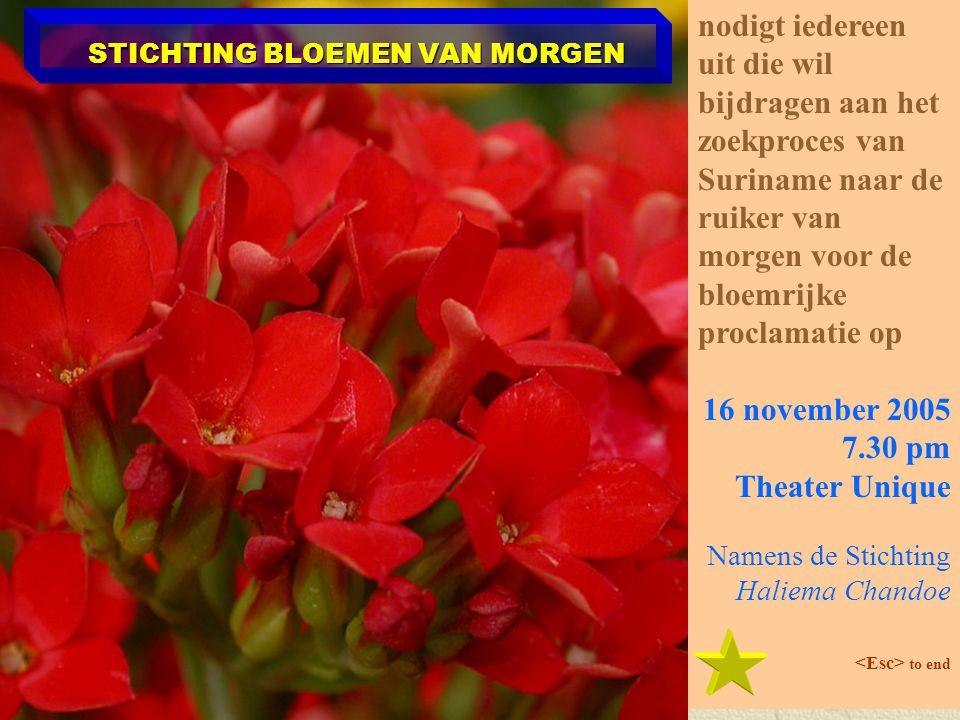 STICHTING BLOEMEN VAN MORGEN nodigt iedereen uit die wil bijdragen aan het zoekproces van Suriname naar de ruiker van morgen voor de bloemrijke proclamatie op 16 november 2005 7.30 pm Theater Unique Namens de Stichting Haliema Chandoe to end