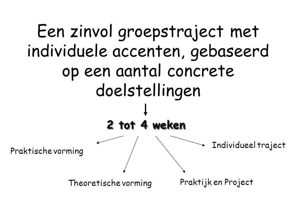 Een zinvol groepstraject met individuele accenten, gebaseerd op een aantal concrete doelstellingen 2 tot 4 weken Praktische vorming Theoretische vormi