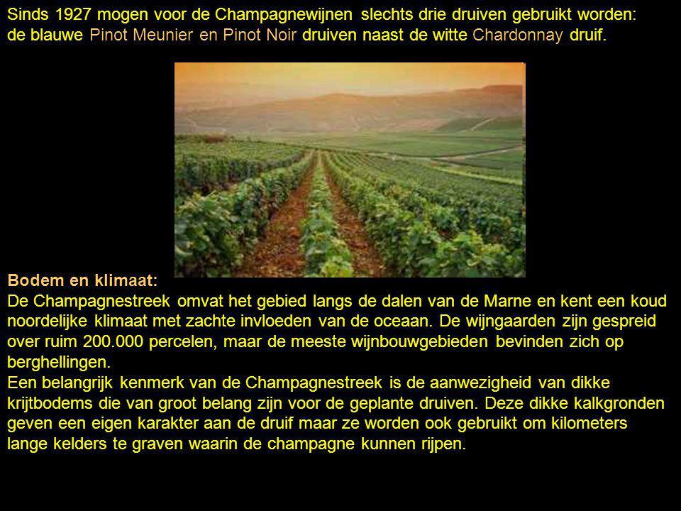 Sinds 1927 mogen voor de Champagnewijnen slechts drie druiven gebruikt worden: de blauwe Pinot Meunier en Pinot Noir druiven naast de witte Chardonnay druif.