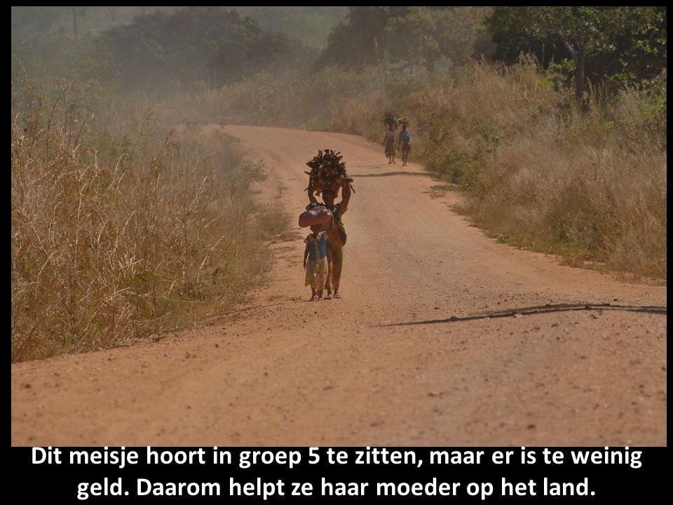 Dit meisje hoort in groep 5 te zitten, maar er is te weinig geld. Daarom helpt ze haar moeder op het land.