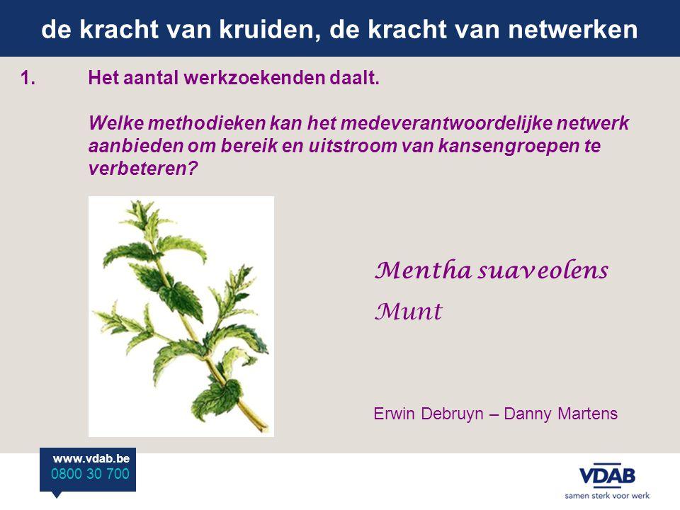 de kracht van kruiden, de kracht van netwerken www.vdab.be 0800 30 700 1.