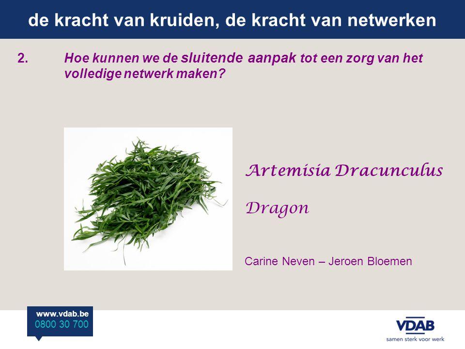 de kracht van kruiden, de kracht van netwerken www.vdab.be 0800 30 700 2.Hoe kunnen we de sluitende aanpak tot een zorg van het volledige netwerk maken.