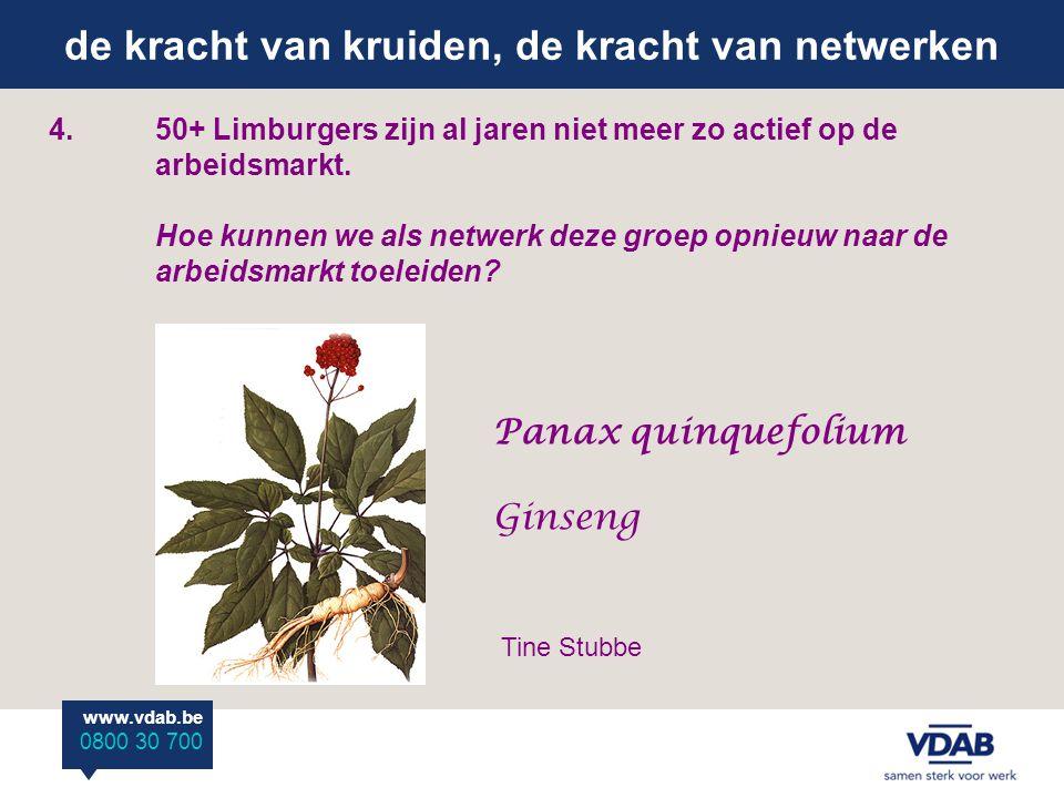 de kracht van kruiden, de kracht van netwerken www.vdab.be 0800 30 700 4.50+ Limburgers zijn al jaren niet meer zo actief op de arbeidsmarkt.