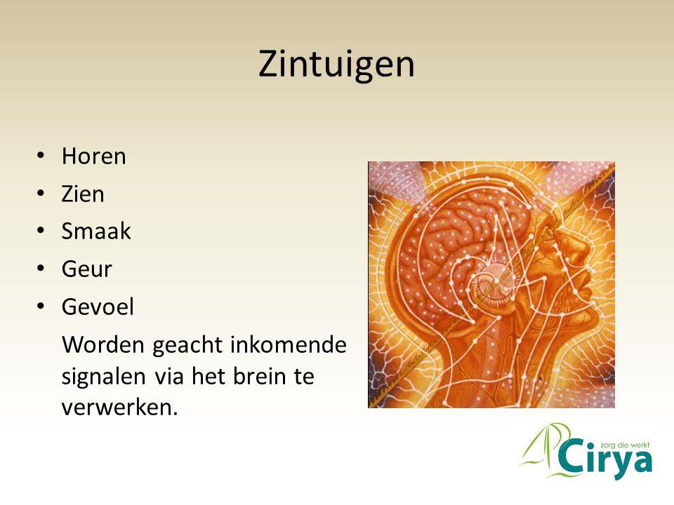 Zintuigen • Horen • Zien • Smaak • Geur • Gevoel Worden geacht inkomende signalen via het brein te verwerken.