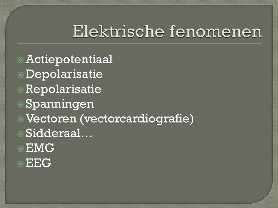  Actiepotentiaal  Depolarisatie  Repolarisatie  Spanningen  Vectoren (vectorcardiografie)  Sidderaal…  EMG  EEG