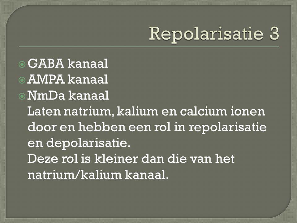  GABA kanaal  AMPA kanaal  NmDa kanaal Laten natrium, kalium en calcium ionen door en hebben een rol in repolarisatie en depolarisatie. Deze rol is