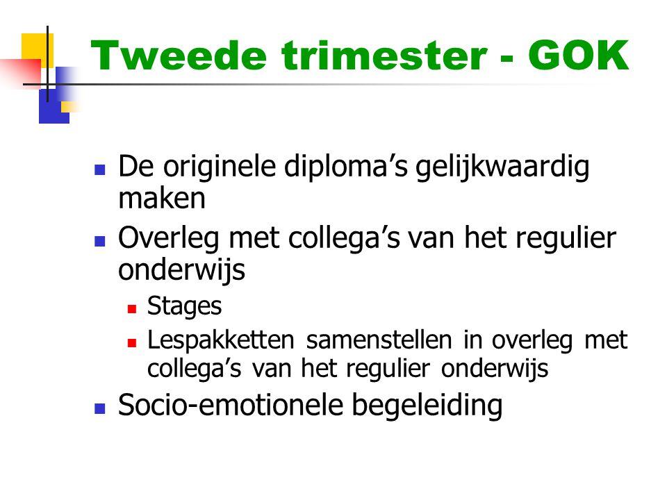 Tweede trimester - GOK  De originele diploma's gelijkwaardig maken  Overleg met collega's van het regulier onderwijs  Stages  Lespakketten samenst