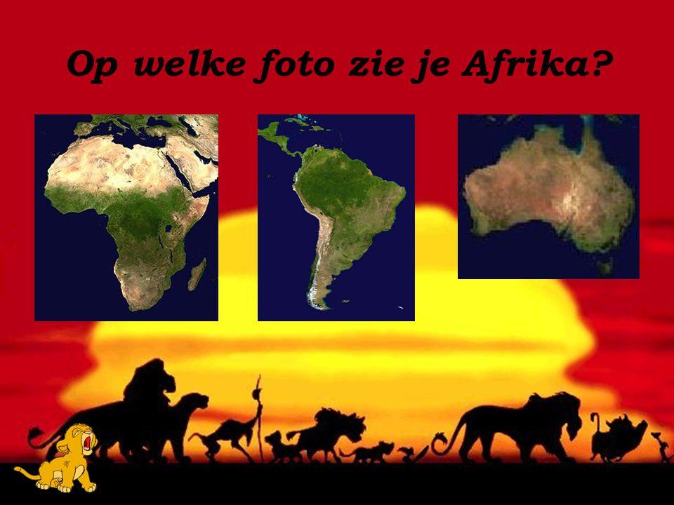 Op welke foto zie je Afrika?