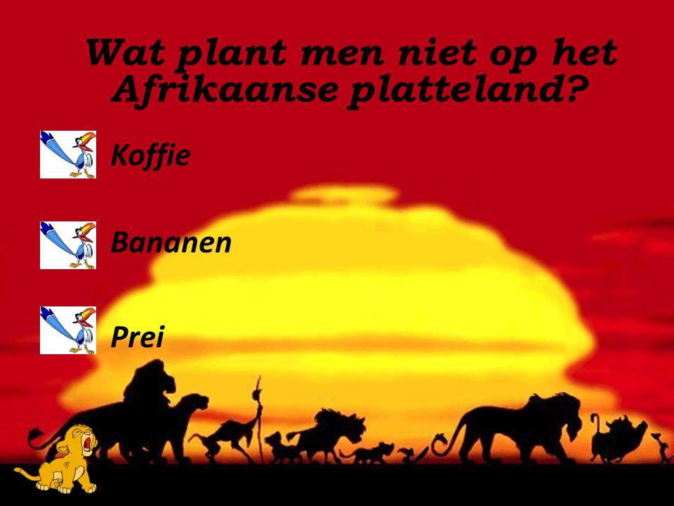 Koffie Bananen Prei Wat plant men niet op het Afrikaanse platteland?